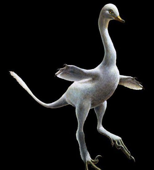 swimming-dinosaur-500x550